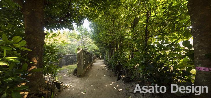 本部町・備瀬のフクギ並木の360度パノラマ写真